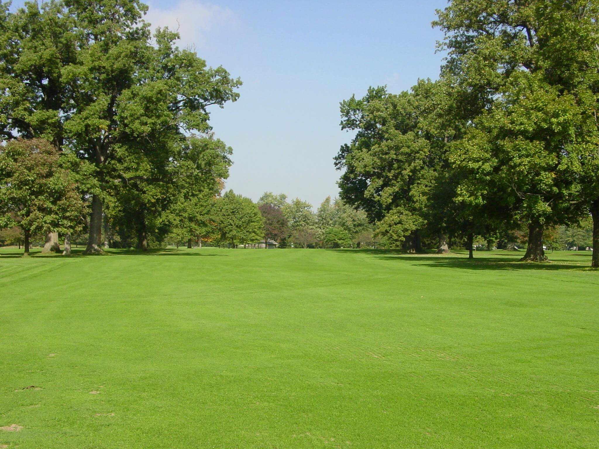 Hole 14 on the golf course